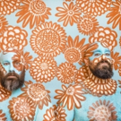 Epic Beard Men Release THIS WAS SUPPOSED TO BE FUN Today & Launch U.S. Tour Next Week