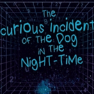 Rahway High School Tackles CURIOUS INCIDENT