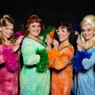Farmers Alley Theatre Presents THE MARVELOUS WONDERETTES: DREAM ON Photo