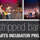 Synchronicity Theatre Announces Winners of 2017-18 'STRIPPED BARE' Project Photo