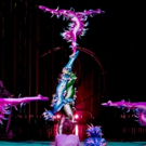 BWW Review: CIRQUE DU SOLEIL's VAREKAI in Texas