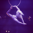 Audiences Have Three Weeks Left to Catch LA SOIREE at the Aldwych Theatre