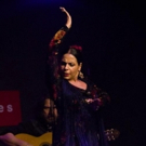 Ballet Hispanico Presents its Flamenco Tablao Series Featuring Nelida Tirado Photo