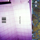 Teenage Wrist Announce 'Counting Flies' EP Photo