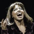 BWW Review: TINA, Aldwych Theatre Photo