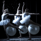 CONNetic Dance's 'NUTCRACKER SUITE & SPICY' to Add More Spice to the Season in Hartfo Photo