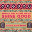 Steve Aoki Throws Down Electrifying Remix of Garmiani's 'Shine Good'