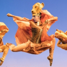 Photo Flash: Be Prepared for THE LION KING National Tour with New Photos Photo