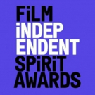 2019 Film Independent Spirit Awards Nominations Announced Photo