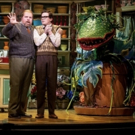 Review Roundup: What Did Critics Think of LITTLE SHOP OF HORRORS at Stratford Festiva Photo