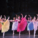 New Jersey Ballet's THE NUTCRACKER to Dance Into MPAC for the Holidays