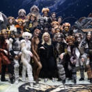 Global Roundup 3/14: Britney Musical Comes To Chicago, Alice Ripley in INTO THE WOODS, DIANA Reviews, and More!