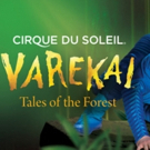 Cirque du Soleil's VAREKAI to Fall from the Sky for the Last Time in Dallas