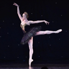 Photo Flash: American Ballet Theatre Hosts 2017 Holiday Benefit in Beverly Hills Photo