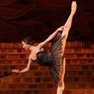 Photo Flash: SWAN LAKE Comes To Houston Ballet Photo