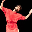 New York Live Arts Presents Netta Yerushalmy's Epic Four Hour, Six Part Series Photo