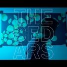 John Vanderslice's THE CEDARS Is Out Today