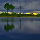 BaCA Presents Stunning Photo Exhibit 'The Everglades: Spirit Of The Land'