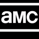 The Cast and Producers of AMC's THE WALKING DEAD, FEAR THE WALKING DEAD, & PREACHER Invade San Diego Comic-Con