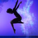 BWW Interview:  Paige Fraser of Visceral Dance Chicago
