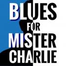 Loft Ensemble In Sherman Oaks Presents BLUES FOR MISTER CHARLIE Photo
