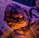 BWW Review: CREATURE: A FRANKENSTEIN PUPPET ADAPTATION at Suspend