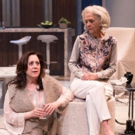 BWW Review: MARJORIE PRIME at Segal Centre