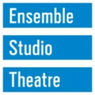 Ensemble Studio Theatre Sarah McLellan as New Executive Director