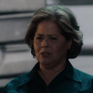 VIDEO: Watch Anna Deavere Smith Get Political in HBO's New Trailer for NOTES FROM THE FIELD