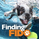 Doggy Matchmaking Show FINDING FIDO To Return For Second Season Cable Net Z Living March 18