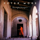 Peter More Releases Debut LP Beautiful Disrepair, Produced by Steely Dan's Donald Fagen