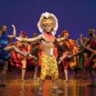 Disney's THE LIONKING Will Headline 2019-2020 Best Of Broadway Season At North Charle Photo