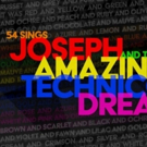 JOSEPH AND THE AMAZING TECHNICOLOR DREAMCOAT Will Have 25th Anniversary Concert Photo
