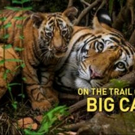 National Geographic Live: On The Trail Of Big Cats Comes to Playhouse Square