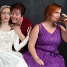 BWW Review: Theatre in the Park's Funny IT SHOULDA BEEN YOU Rides on the Coattails of Standout Comedic Performances