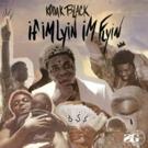 Kodak Black Releases New Track and Video for 'If I'm Lyin, I'm Flyin'