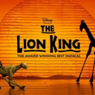 Bid Now on 2 Tickets to THE LION KING