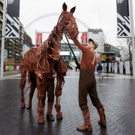 Tickets Now On Sale For WAR HORSE At Troubadour Wembley Park Theatre Photo