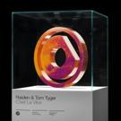Raiden and Tom Tyger Team Up for 'C'est La Vibe' on Protocol Recordings Photo