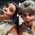 BWW Review: MAS COMMUNITY THEATRE'S ARSENIC AND OLD LACE IS KILLLER COMEDY at Carrollwood Cultural Center