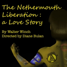 THE NETHERMOUTH LIBERATION To Premiere At 2018 KC Fringe Festival Photo