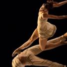 Festival Du Monaco Dance Forum 2018 : Du 8 Au 16 Décembre à Monaco