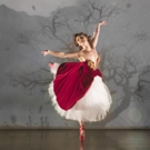 Review Roundup: RED SHOES at New York City Center Photo