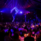 BWW Review: PALAZZO at Spiegeltent: REUBENLICIOUS - SO DELICIOUS!