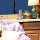 BWW Review: IN OLD AGE at Magic Theatre Photo