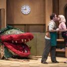 LITTLE SHOP OF HORRORS Opens Friday At The Kravis Center's Rinker Playhouse Photo
