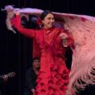 Teatro Paraguas Presents Holiday Dream Flamenco
