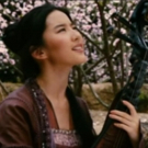 VIDEO: Meet Disney's New 'Mulan', Chinese Actress Liu Yifei! Photo