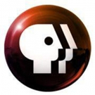 PBS Announces Third and Final Season of British Crime Series THE TUNNEL 7/1