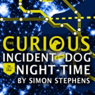 THE CURIOUS INCIDENT OF THE DOG IN THE NIGHT-TIME Hits FST's Mainstage